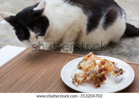 fish bones on a plate for cat - stock photo