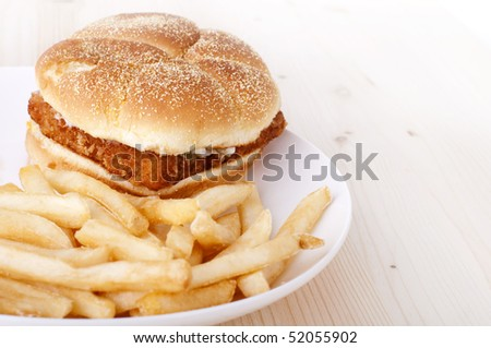 Fish burger and French Fries on plate - stock photo