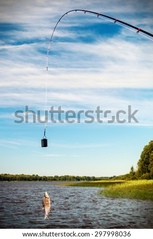 fish caught on a hook. Focus on the trough and fish - stock photo