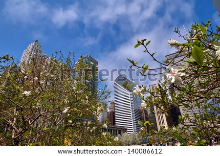 Fish-eye view of Chicago skyline with daffodils in the foreground. - stock photo