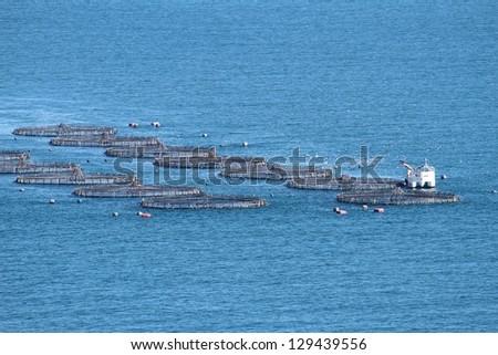 Fish farm and fishing boats working - stock photo