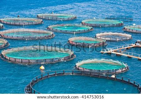 Fish farm in the sea. View from mountain. Floating fish farm and breeding fry in trays grids. Corfu island (Kerkyra). Sidari region. Greece - stock photo