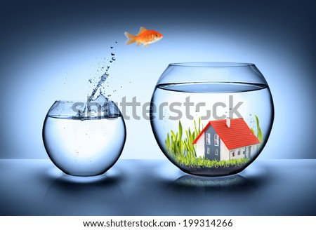 fish find house - real estate concept  - stock photo