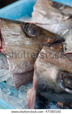Fish heads at a seafood market in Japan. - stock photo