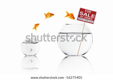 Fish in an aquarium with water and a sign. The concept of real estate - stock photo