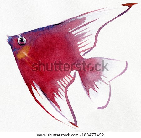 Fish isolated on white. Watercolor. - stock photo