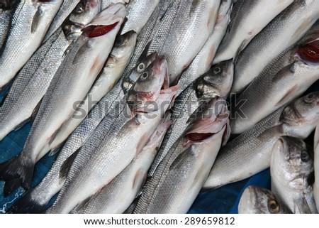 Fish Market in Istanbul. Turkey - stock photo