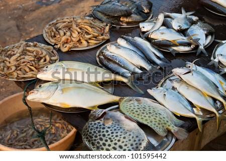 Fish market in Kerala, India - stock photo