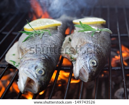 Fish on grill with lime slices and olive oil - stock photo