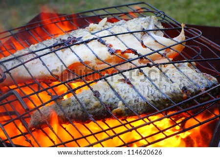 Fish on the grill. Healthy food with omega 3 unsaturated fatty acid.  Close up with shallow DOF. - stock photo