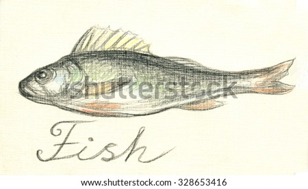 Fish perch. Drawing with colored pencils