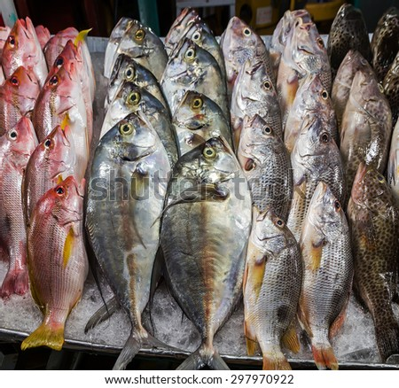 fish seafood in market closeup background - stock photo