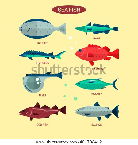 Fish set in flat style design. Ocean, sea and river fishes icons collection. Salmon, fugu, sea bass, sturgeon. - stock photo