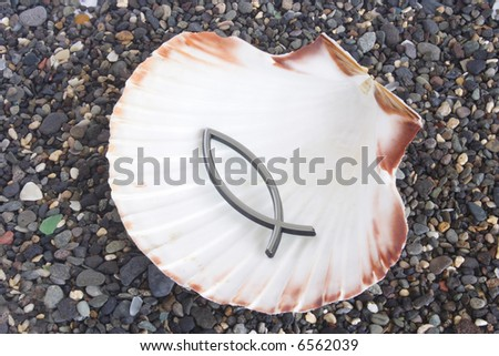 Fish sign in seashell over pebble sand  at the beach - stock photo