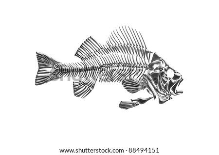 Fish skeleton isolated - stock photo