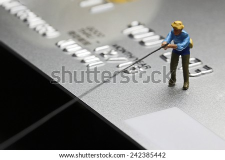 Fisher on Credit card - stock photo