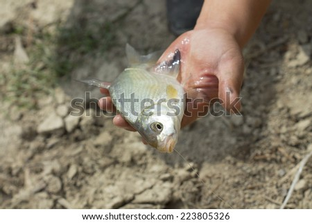 fisherman caught a fish macro
