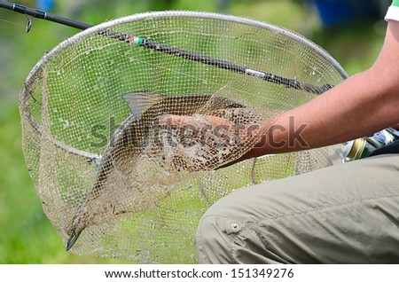 Fisherman holding a fishing net with big bream - stock photo