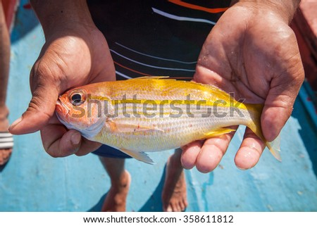 fisherman holding yellow fish on hand on the fishing boat - stock photo