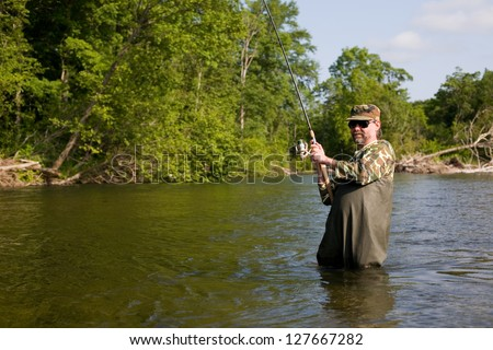 Fisherman pulls caught salmon. River. - stock photo