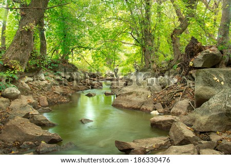 fisherman standing on the rocks fishing around green forest and river - stock photo