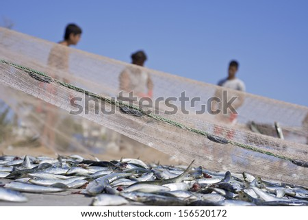 Fisherman throwing net from the boat - stock photo