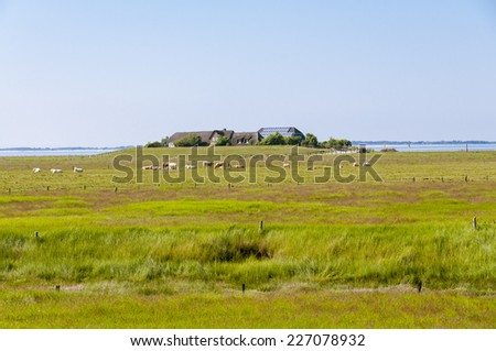 Fishermans Cottage on a Warft on the Hallig Langeness in the wadden Sea in the north of Germany - stock photo