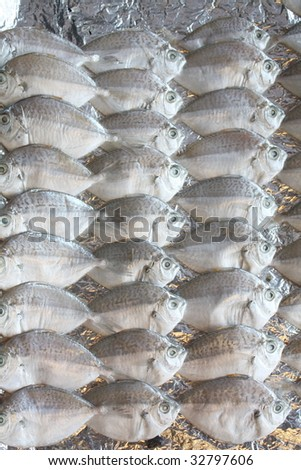 Fishes for sales - stock photo