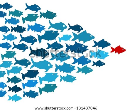 Fishes in group leadership concept - stock photo