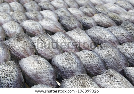 Fishes (Trichogaster pectoralis) desiccated.  - stock photo