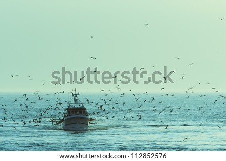 Fishing boat returning with lots of seagulls feeding at the rear of the boat - stock photo