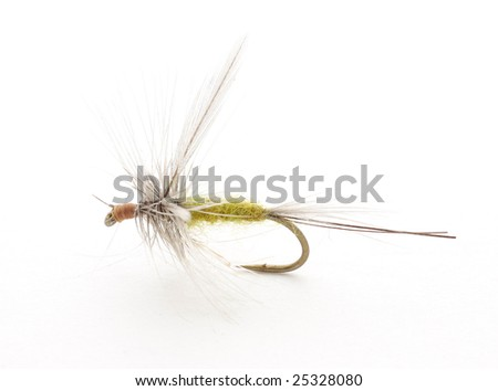 Fishing fly - stock photo