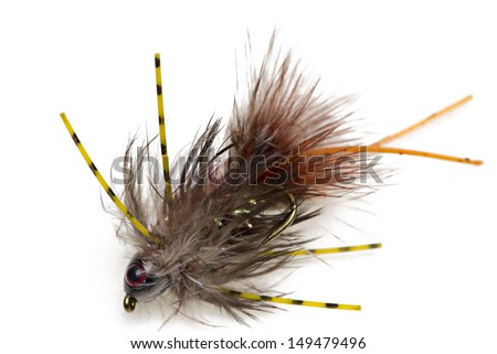 Fishing fly isolated focus stacked. - stock photo