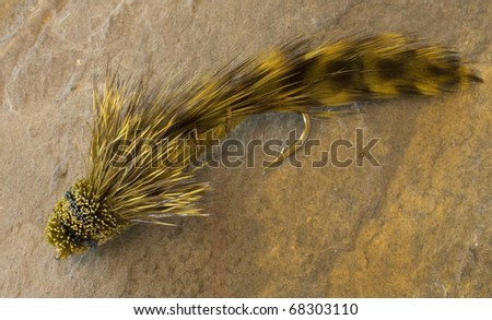 fishing fly meant to be used wet - stock photo