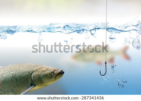 Fishing hook under water and fishes - stock photo