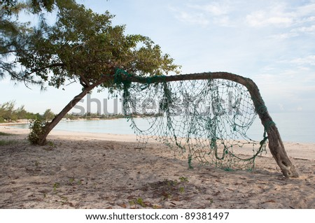 Fishing Net  hanging on the bend tree on the beach - stock photo
