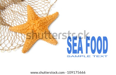 Fishing net with starfish and easy removable text. - stock photo