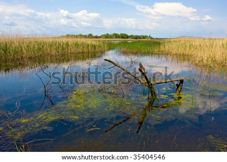 Fishing place on backwater river - stock photo
