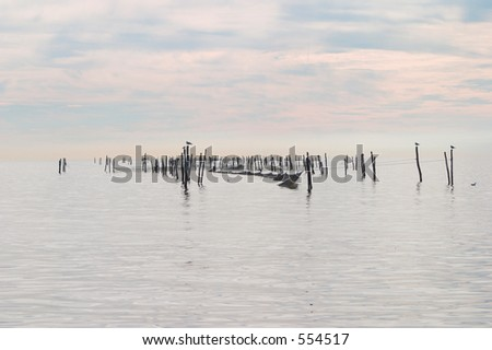 Fishing poles in the water near Roedby