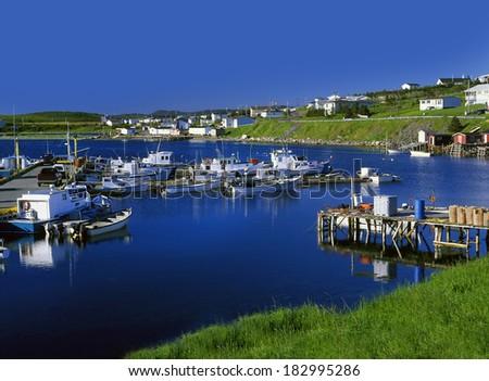Fishing village St. Anthony in Newfoundland, Canada - stock photo