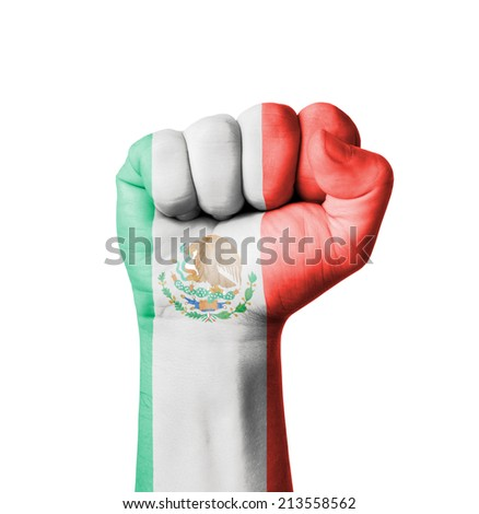 Fist of Mexico flag painted - stock photo