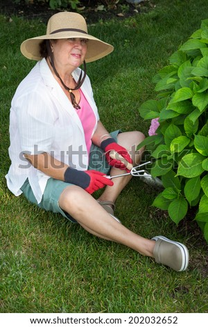Fit active senior lady working in the garden sitting on the lawn alongside a hydrangea bush with her trowel and fork weeding around the bush - stock photo