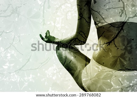 Fit woman sitting in lotus pose against branches and autumnal leaves - stock photo
