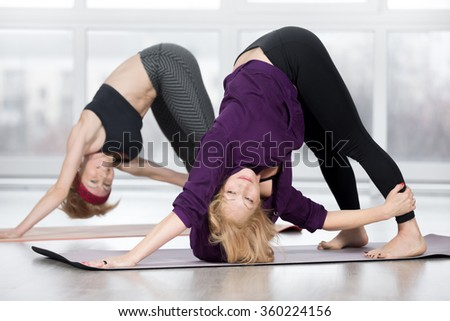 Fitness, stretching practice, group of two attractive fit mature women in sportswear working out in sports club, doing Revolved downward-facing dog pose, Parivrtta adho mukha svanasana, full length - stock photo