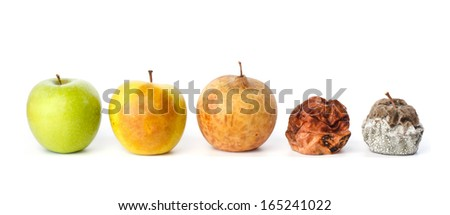Five apples in various states of decay against white background - stock photo