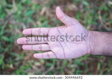 five fingers showing on outdoor green field - stock photo