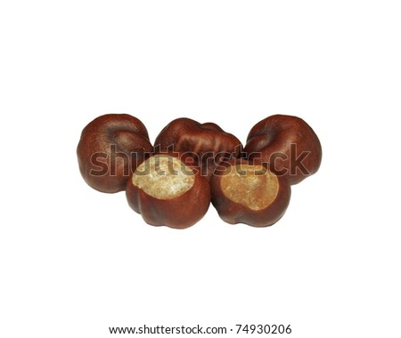 Five fresh chestnuts isolated over white - stock photo
