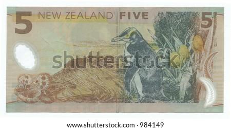 five new zeALAND dollars - stock photo