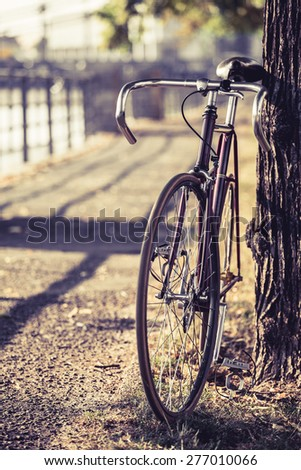 Fixed gear bike. Road bicycle on city street. Green park and trees outdoors, urban scene bike under a tree, copy space and shallow depth of field, vintage old retro bike, cycling or ecology commuting - stock photo