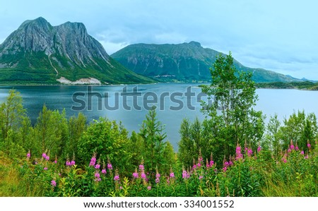 Fjord summer cloudy view with flowers in front (Norway) - stock photo